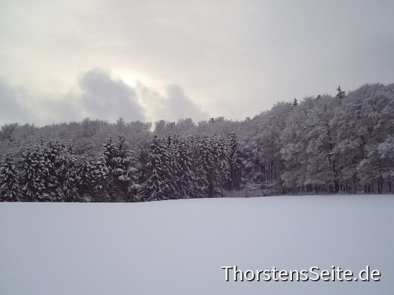 Schnee in Neustadt